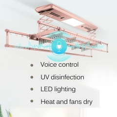 Voice control wall mounted clothes rail